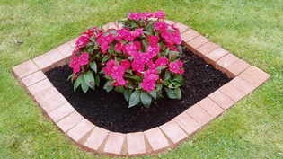 Perfect Edge záhrada