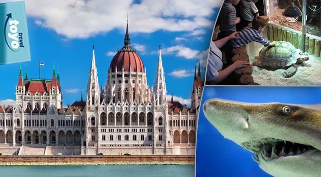 Fotka zľavy: Celodenný zájazd do Budapešti pre 1 osobu len za 19,50€ s prehliadkou mesta so sprievodcom a možnosťou návštevy podmorského sveta - Tropicaria Oceanaria.