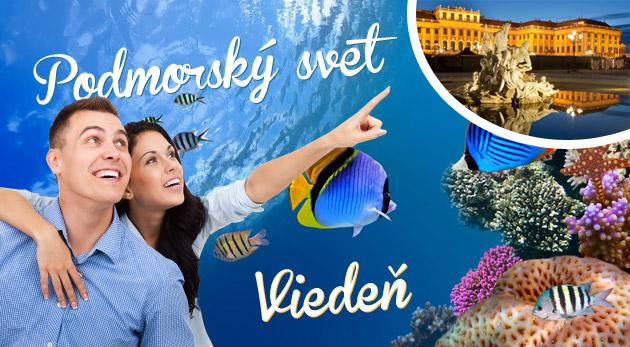 Fotka zľavy: Zájazd do Viedne len za 16,90€. Pozrite sa do hlbín podmorského sveta v najväčšom morskom akváriu v Rakúsku! Možnosť návštevy historického centra a Domu mora.
