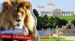 Zľava 30%: Jednodňový zájazd do Viedne za 16,90€ - prehliadka najstaršej ZOO v Európe i zámku Schönbrunn s nádhernými francúzskymi záhradami.