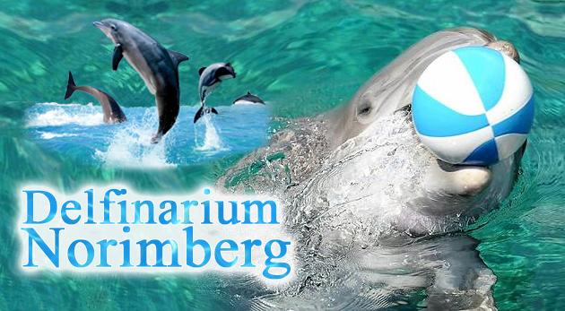 Fotka zľavy: Zájazd do delfinária, návšteva zoo a atraktívna show s delfínmi v nemeckom Norimbergu za výnimočnú cenu len 49€ pre 1 osobu. Skvelá príležitosť pre letný rodinný výlet!