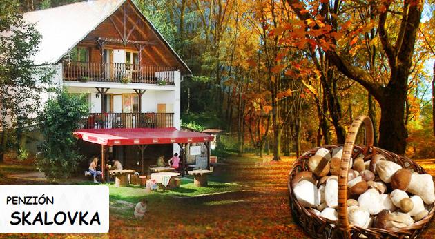 Fotka zľavy: Prežite niekoľko dní v prírode Kysúc v Penzióne Skalovka už od 32,90€ pre dvojicu s fľaškou vínka na uvítanie. Turistika, cykloturistika, lyžovanie, paintball, jazda na koni a pre deti ihrisko.