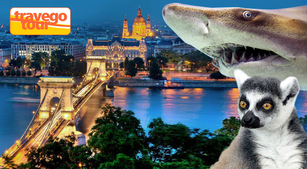 Fotka zľavy: Navštívte famózne Tropicarium a ZOO v Budapešti len za 19,50€. Zažite blízkosť exotických živočíchov a nechajte sa ohúriť krásou tropickej flóry! Doprava a sprievodca v cene.