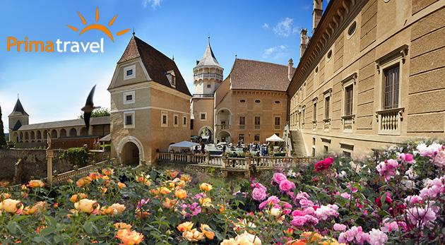 Fotka zľavy: Objavte zámok ruží Rosenburg a Kittenberské záhrady snov len za 23,90 €. Vydajte sa za jednou z najkrajších expozícií svojho druhu v Rakúsku.