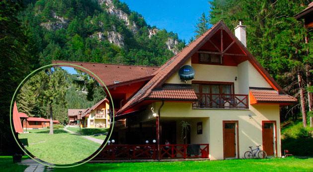 Fotka zľavy: Načerpajte energiu v prírode Veľkej Fatry a ubytujte sa v Chatovej osade Gader. Už od 69 € si budete môcť pochutnať na polpenzii i užívať fantastické chvíle v saune!