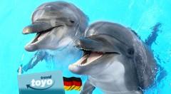 Zľava 42%: Rozžiarte očká vašich detí aj tie svoje - poteší vás zájazd do delfinária, návšteva ZOO a atraktívna show s delfínmi v nemeckom Norimbergu len za 49 €.