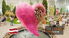 Zľava 30%: Omamná vôňa a záplava farieb na vás čaká počas letného zájazdu na očarujúcu výstavu kvetov a záhrad v rakúskom Tullne len za 18,90 € vrátane dopravy, sprievodcu a prehliadky mestečka!
