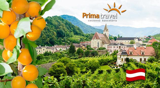 Fotka zľavy: Spoznajte nádherné rakúske údolie Wachau zaradené do zoznamu UNESCO a zažite jedinečné marhuľové slávnosti s množstvom špecialít - jednodňový zájazd len za 21,90 € s dopravou autobusom a sprievodcom!