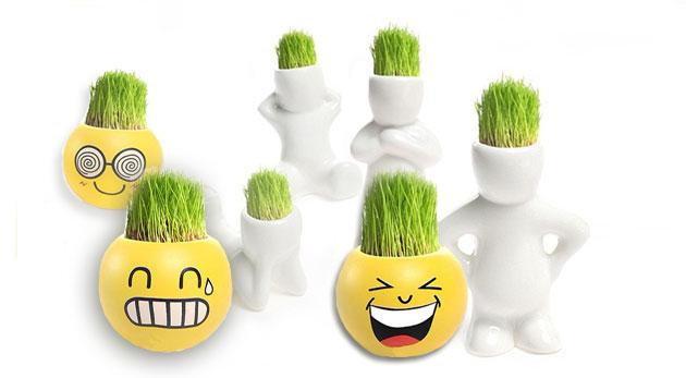 Fotka zľavy: Veselí trávňaci - vtipná dekorácia v podobe originálnych postavičiek alebo smajlíkov len za 3,99 € s bonsajovou trávou na hlave, ktorú môžno zastrihávať do rôznych účesov. Skvelý tip na darček!